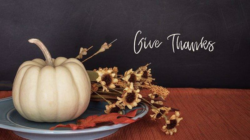 What you didn't know about Thanksgiving