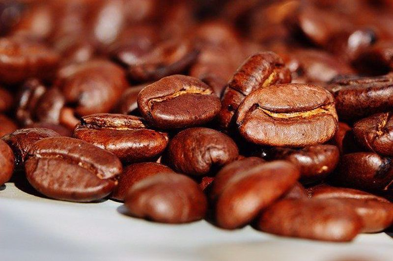 The Origins of your morning Coffee