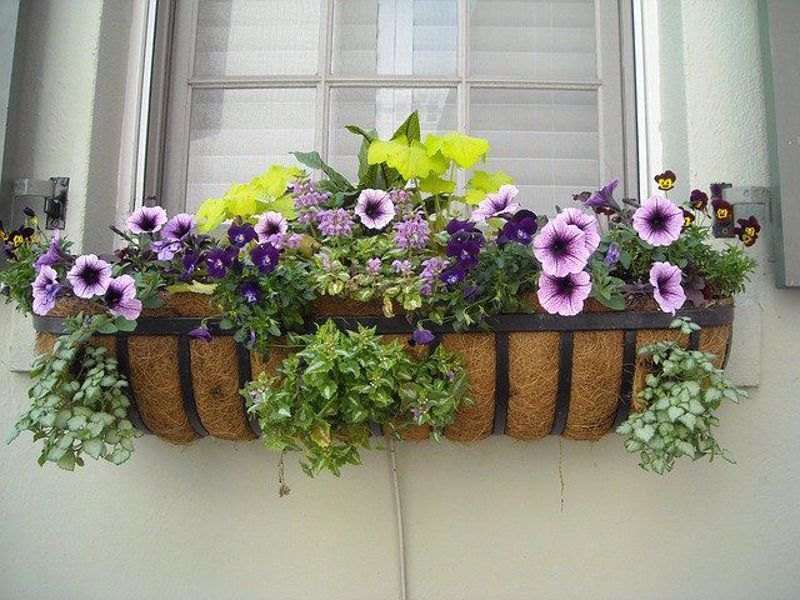 Silk flowers for stunning window box all year round