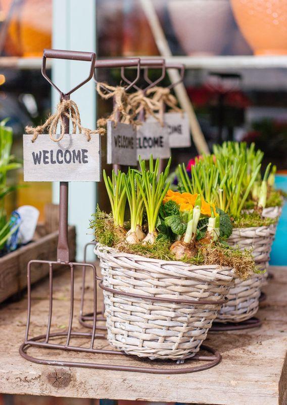 Important Garden Tasks for March