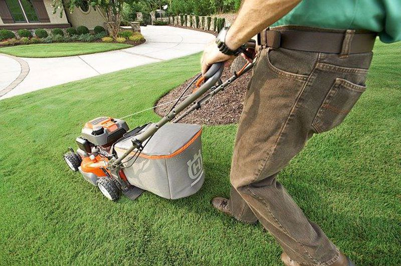 How to choose a small lawn mower