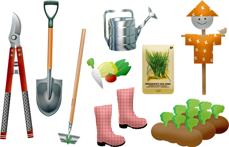 A guide to all the tools you need to garden
